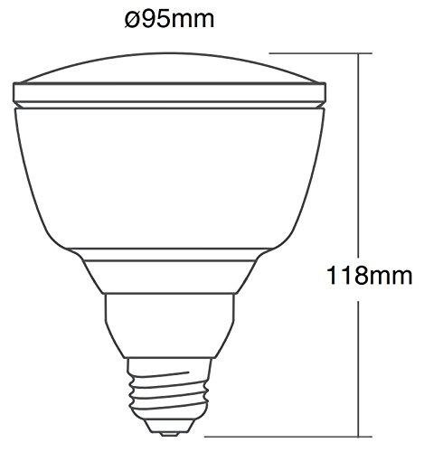 Glühbirne mit Durchmesser 95 mm und Höhe 118 mm