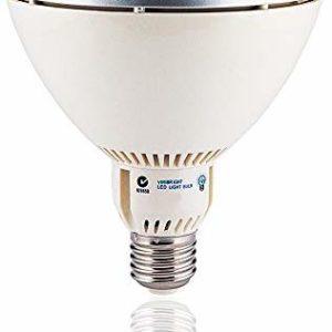 VIRIBRIGHT LED PAR38 Lampe Birne 73488