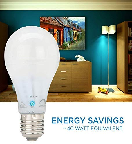 Energy Savings 40 Watt Equivalent